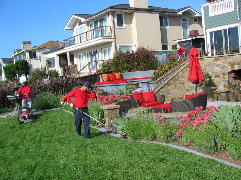 - Lush Landscaping Services In Melbourne - Allaboutgoodlife.com